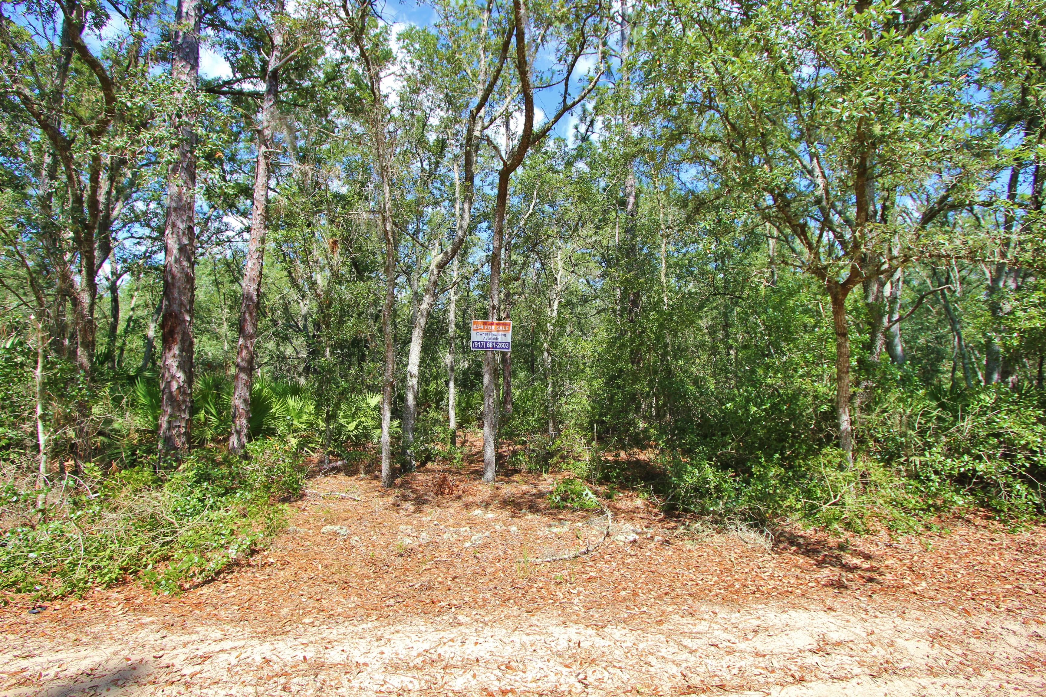7200 Cardinal Street, Florahome, Florida 32140 - USA Land Ventures