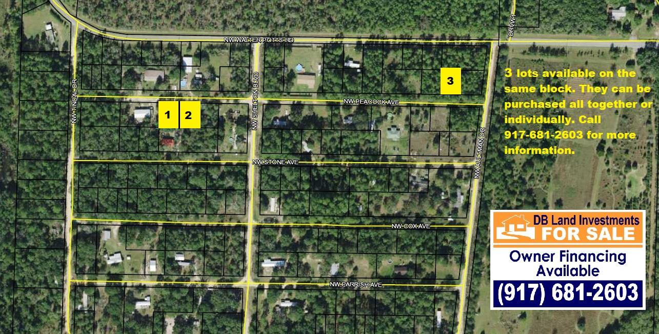 NW Peacock Ave, Altha Florida 32421 - USA Land Ventures